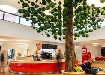 Unter dem Baum der Wünsche können sich die Besucher der Hausausstellung bei einem Imbiss und Kaffeespezialitäten erholen.