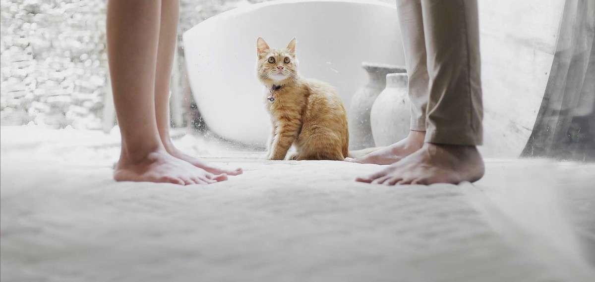 Ein weicher Teppich fürs Wohnzimmer, bitte - Wohnideen - Magazin ...